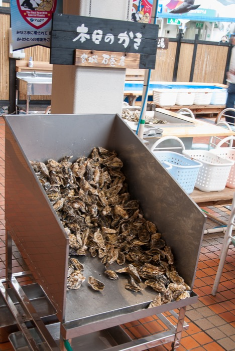 Oyster_party-6